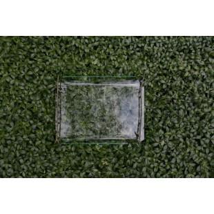Дизайнерский поднос Ramus из стекла