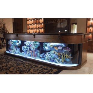 Аквариум из гнутого стекла